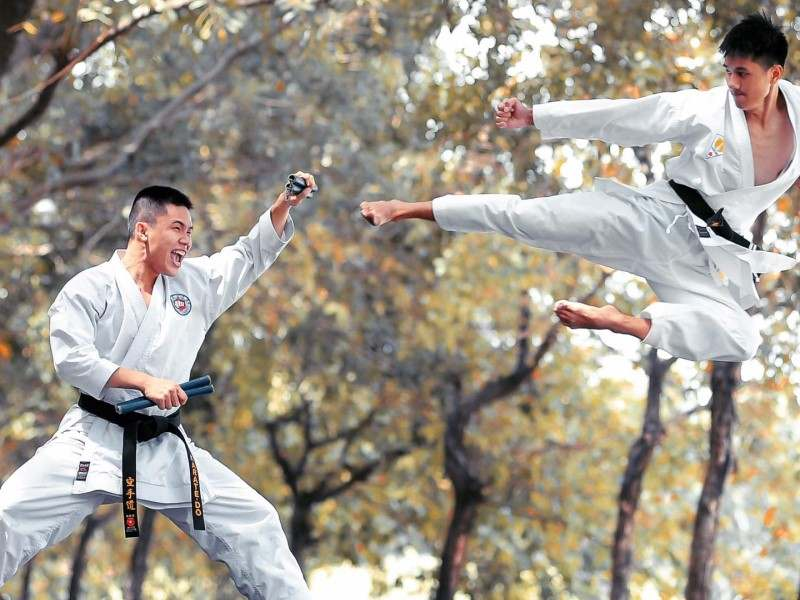 adult martial arts school in North Tampa